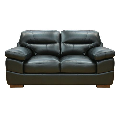 Jayson Loveseat in Black - Front view - SU-JH3780-200SPE