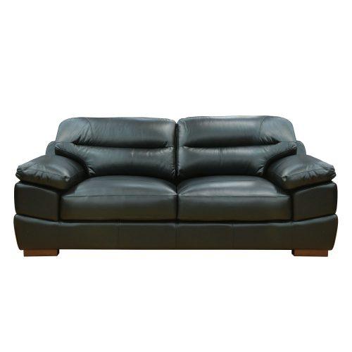 Jayson Sofa in Black - Front view - SU-JH3780-301SPE